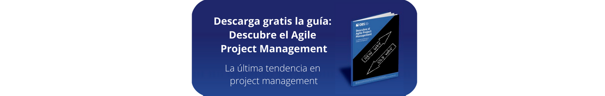 Ebook GRATIS: Agile Project Management